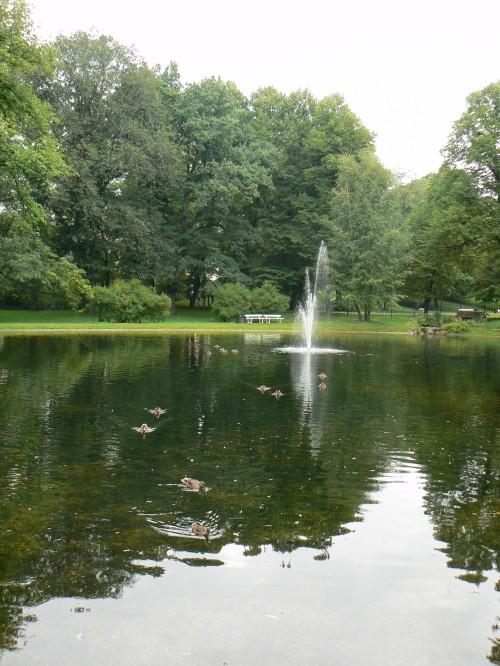 Lacul din parc